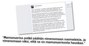 Jussi Halla-ahon mukaan maahanmuuttajanuorten mielestä suomalaisten potkiminen on hauskaa.