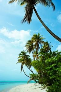 Barbadoksella valkohiekkaisia rantoja riittää silmänkantamattomiin.