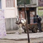 Kalipetrovon romanikaupunginosassa vallitsee aavemainen tunnelma.