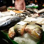 Halvempia kaloja voidaan kaupata kalliimpina.