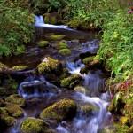 Purojen virtaava vesi sekä sitoo että luovuttaa lämpöä.
