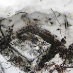 Ikoni löytyi paksun hangen alta Turun Hansakadun kentän laidalta.