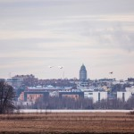 Vanhankaupunginlahden metsiköt ja rannat ovat muuttoaikana todellinen lintuparatiisi aivan Helsingin keskustan liepeillä.
