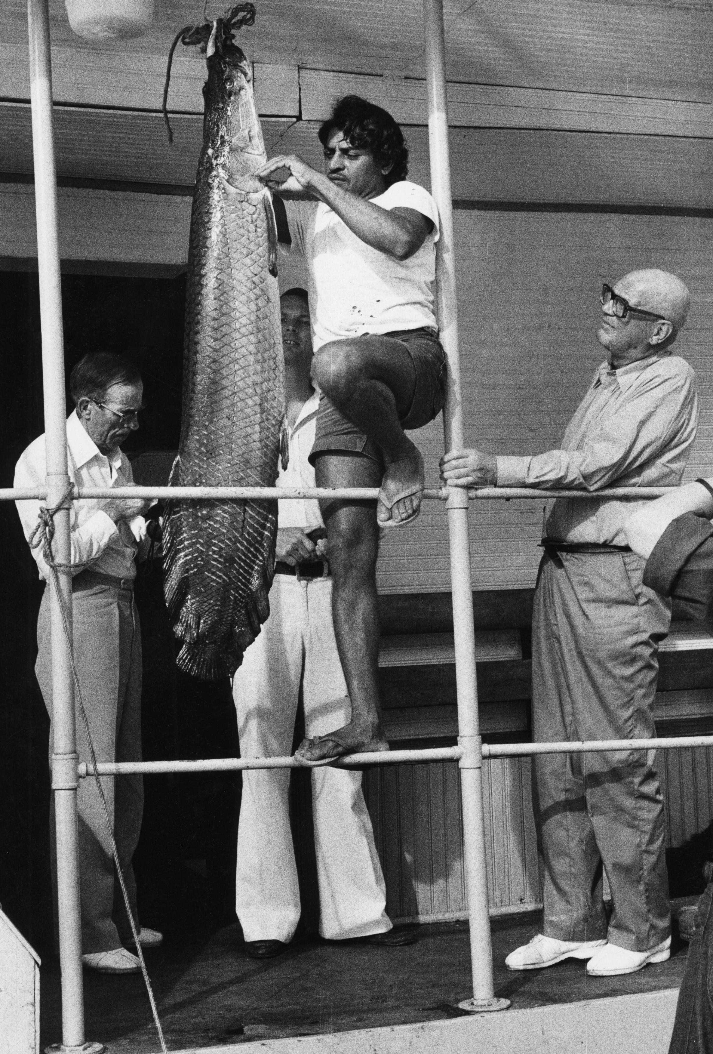 PRESIDENTTI URHO KEKKONEN KALASTAMASSA, BRASILIASSA,  11.2.1976 ©  HEIKKI Y. RISSANEN/SKOY