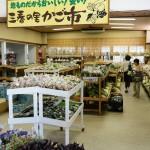 Miharun kaupungissa myytävän paikallisen ruoan säteilymäärää mitataan, jotta ihmisten pelot hälvenisivät.