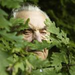 Metsäveli Arnold Ojaste piileskeli neuvosto miehittäjää metsiin kätkeytyneenä 14 vuotta.  Arnoldin katse tammen lehtien takana kertoo paljosta. Tammi on Viron kansallispuu.