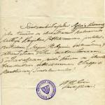 Sylva oli vasta 15, kun hän ilmoittautui vapaaehtoiseksi Karjalan retkikunnan joukkoihin 1914.