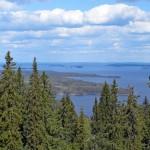 Metsähallituksen pilkkomisen aiheuttama polemiikki heijastaa luonto- ja bisnesarvoja korostavien maailmankuvien törmäystä.