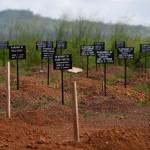 Ebolaan menehtyneiden hautoja Kenaman hautausmaalla Sierra Leonessa marraskuussa 2014.