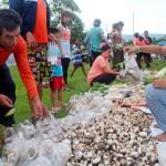 Burprom Chaicheur valitsee kylän torilla sieniä tom yam -keittoon.