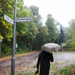 Kladowin kaupunginosassa on suomalainen alue. Sibeliuksentien varrella on vain tuuheaa metsää.