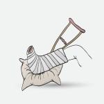 Luuston tulisi kestää oman painon verran kuormitusta arkisissa tapaturmatilanteissa, esimerkiksi jos ihminen kaatuu.