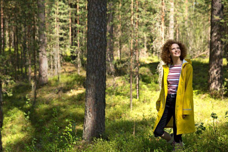 Saimi-metsä-1