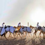 Dubai kuuluu Arabiemiraattien liittoon, joka syntyi, kun alueen kuusi kaupunkia yhdistyivät vuonna 1971. Kamelit kuuluvat alueen vanhaan perinteeseen.