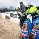 Julija Artemjova ja pelkästään Nikolaiksi esittäytynyt työntekijä lapioivat kasasta kuivikkeita koirien häkkeihin.