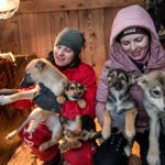 Lena Šaikinan (vas.) ja Nastja Igulkinan mukaan Viipurista on vaikea löytää työtä. Sen vuoksi huonosti palkattu siivoojan työ koiratarhalla sopii heille ainakin toistaiseksi.