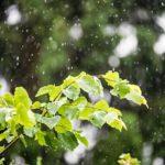 Viikkoa pidempien sääennustusten laatiminen on tänä kesänä ollut matalapaineiden vuoksi harvinaisen vaikeaa.