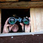 Kouvolalainen Matti Westman ei väijyssä väsy. Rutinoituneen metsästäjän tarkkaavaisuus ei hellitä väijytornissa hetkeksikään.