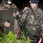 Tuomas Aaltosen (oik.)Mimmi-koira haki ojasta Matti Westmanin ampuman supikoiran.