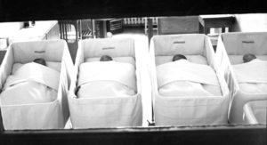 Suomen ensimmäiset neloset synnytyslaitoksella kesäkuussa 1951