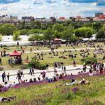 Puistoissa, kuten Mauerparkissa, odottaa lämpimänä vuodenaikana aina viikonloppuisin piknikkipöhinä.