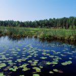 Vesistöoppaan avulla jokainen voi seurata vedenlaatua omissa lähivesistöissään.