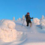 Joulukuusta aina huhtikuulle asti Kolilla kuljetaan lumikengillä.