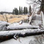 Suomalaisten uudelleen rakentaman kaarisillan luona on vanhojen kaadettujen puiden raatoja.
