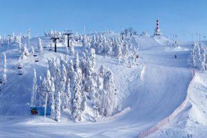 Aloittelijakin oppii hiihtokoulussa varsin nopeasti taidot vaativampiinkin mäkiin, kuten Rukan jylhiin eturinteisiin.