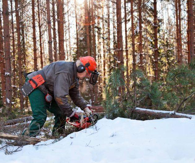 Kehitysapu kiinnostaa Markku Pulkkista.