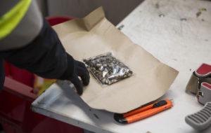 Postitullin liikkuva valvontayksikkö tekemässä alkoholilähetysten ja kiellettyjen aineiden valvontaa Hollannista tulleeseen kuormaan logistiikkakeskukessa Vantaalla 8.2.2017. Kuvassa kuormasta löytynyt huumausaineena käytettäviä Psilosybiinisieniä sisältävä lähetys.