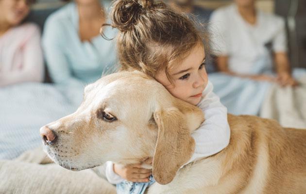 Lapsi halaa koiraa