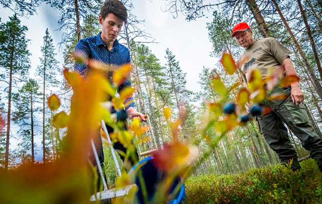 Lasse Tasala ja Olli Vainio