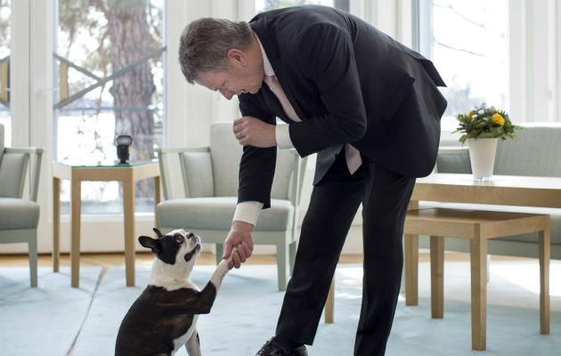 Sauli Niinistö kättelee Lennu-koiransa kanssa.