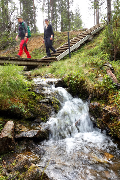 Kansallispuiston poluilla on sillat purojen yli