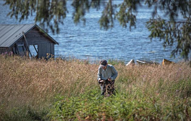Järven pohjoispäässä on Keimiöniemi, jonne Saari vie saaliinsa
