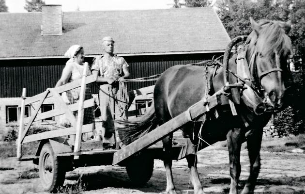Alli ja Kaino Kangasmäki ja Jalmari-hevonen.