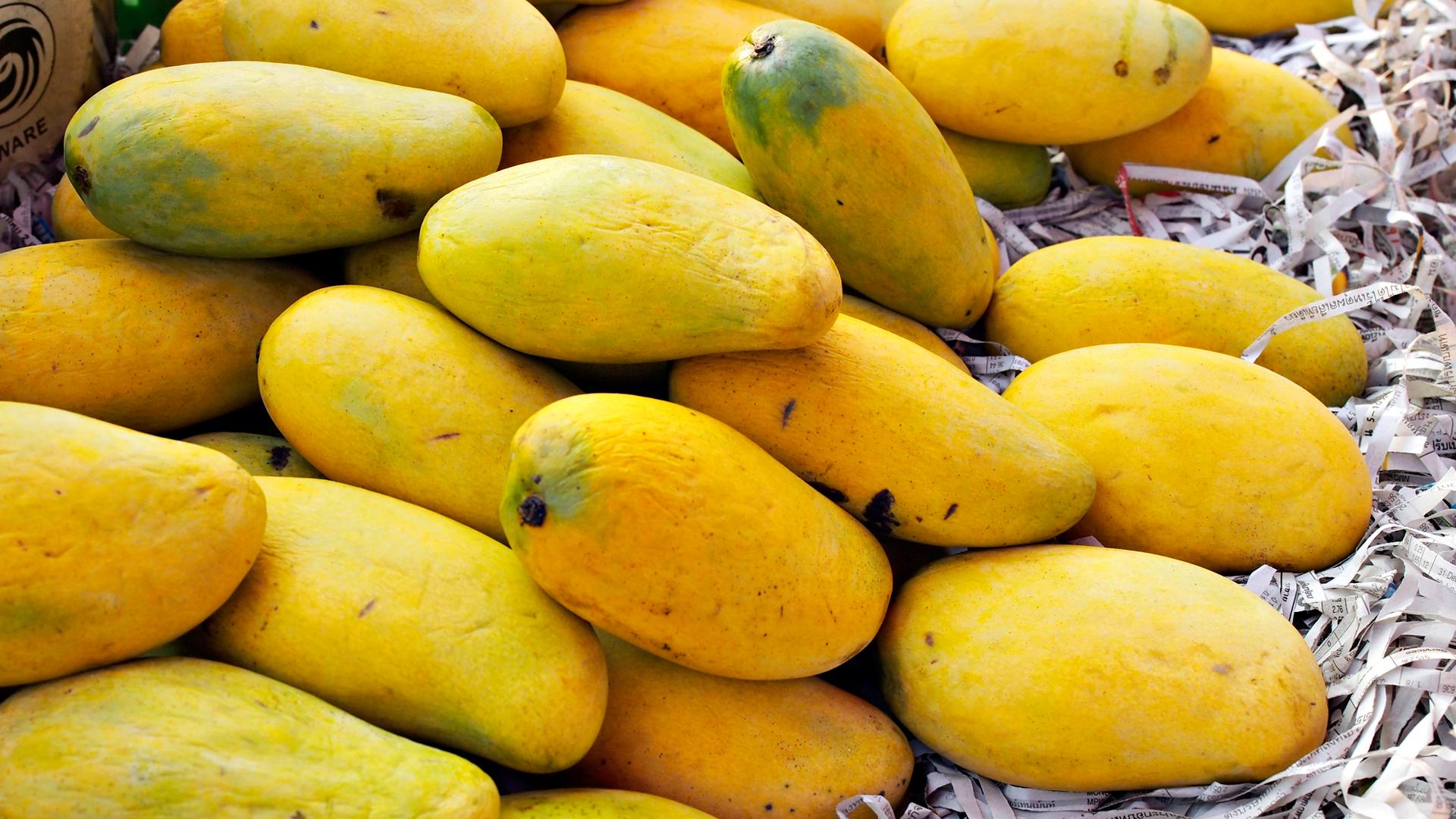 Paikallinen mango