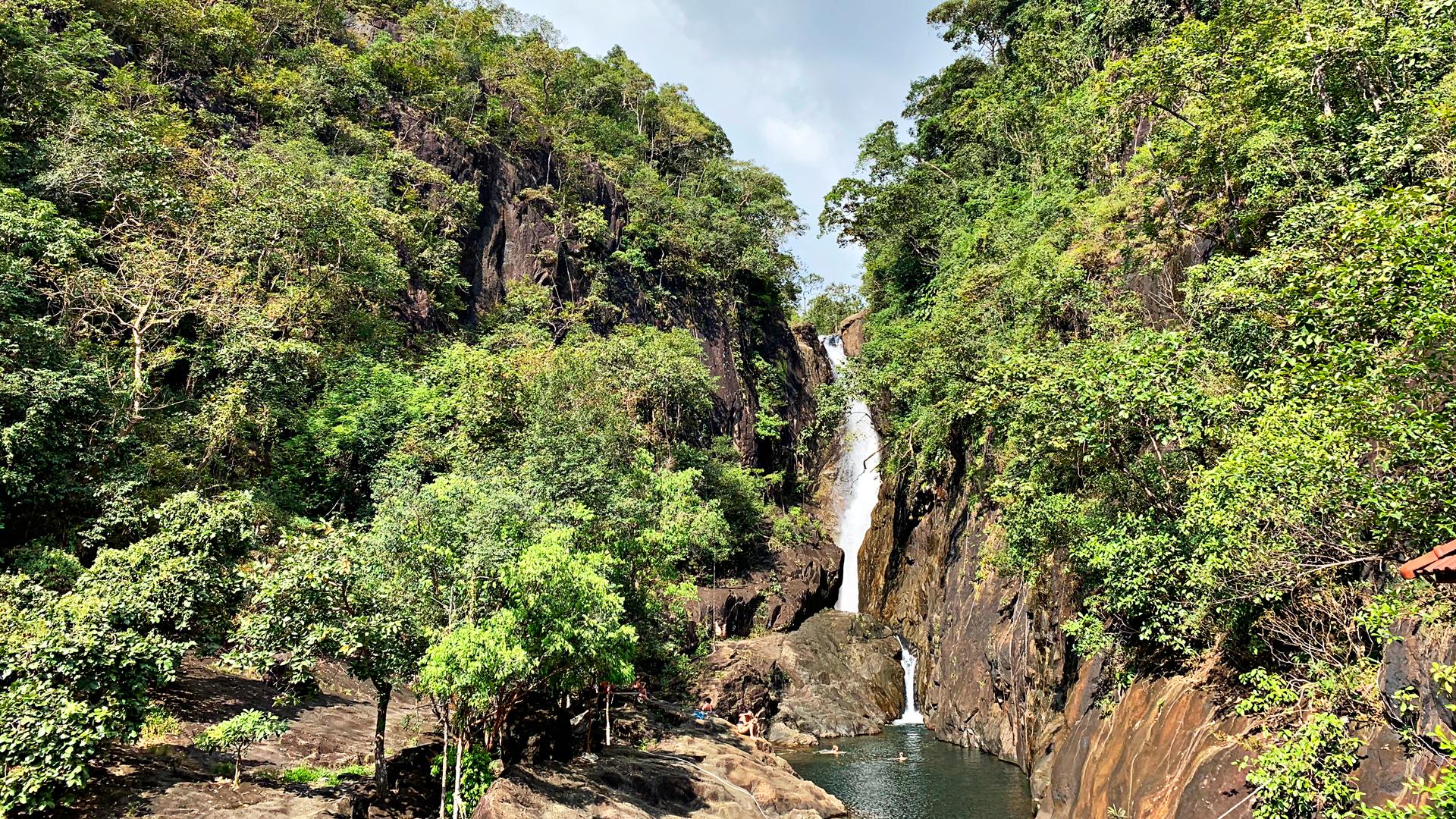 Kilometrin mittainen viidakkopolku