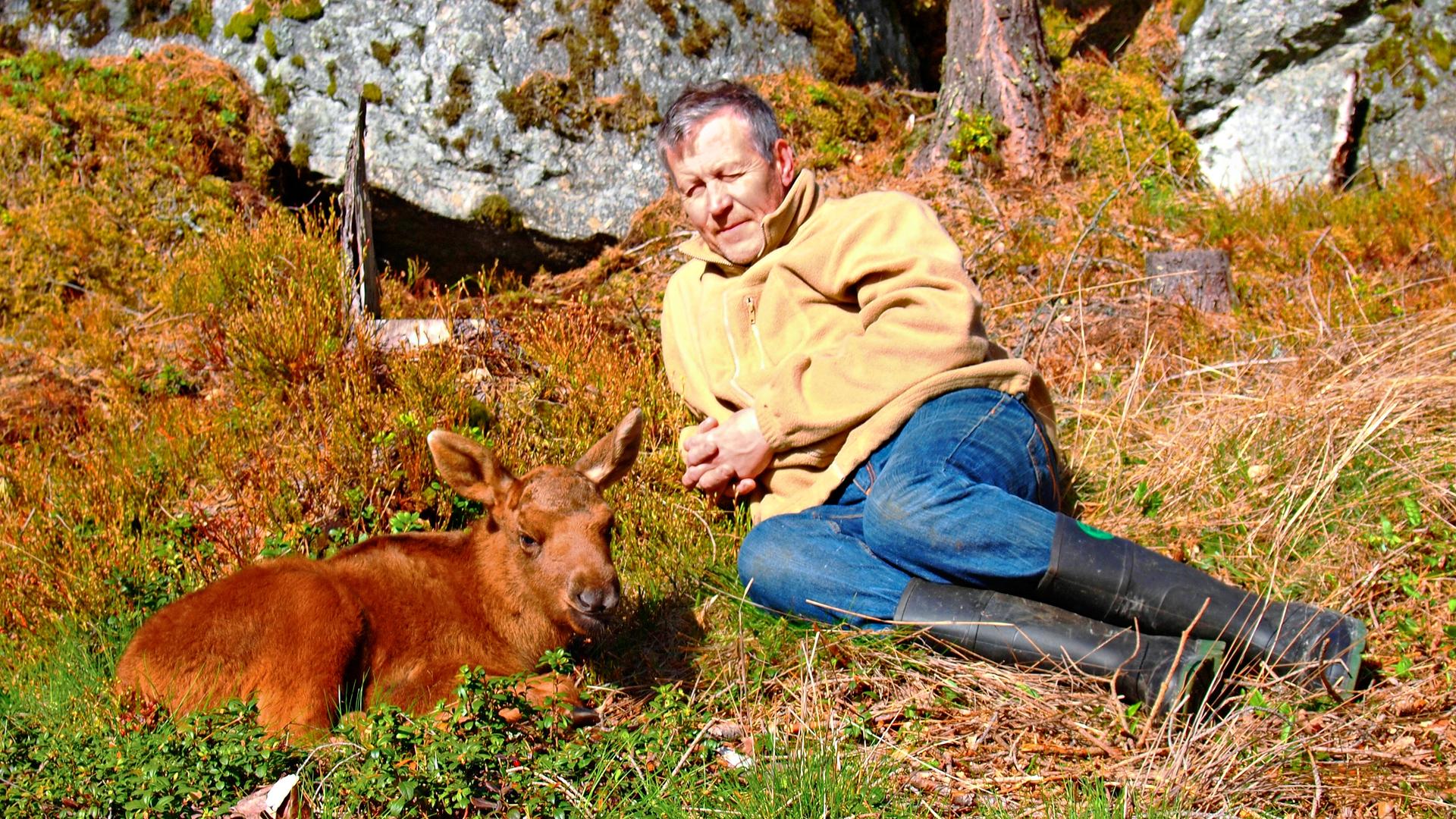 Pikku-Mervi ja Markku