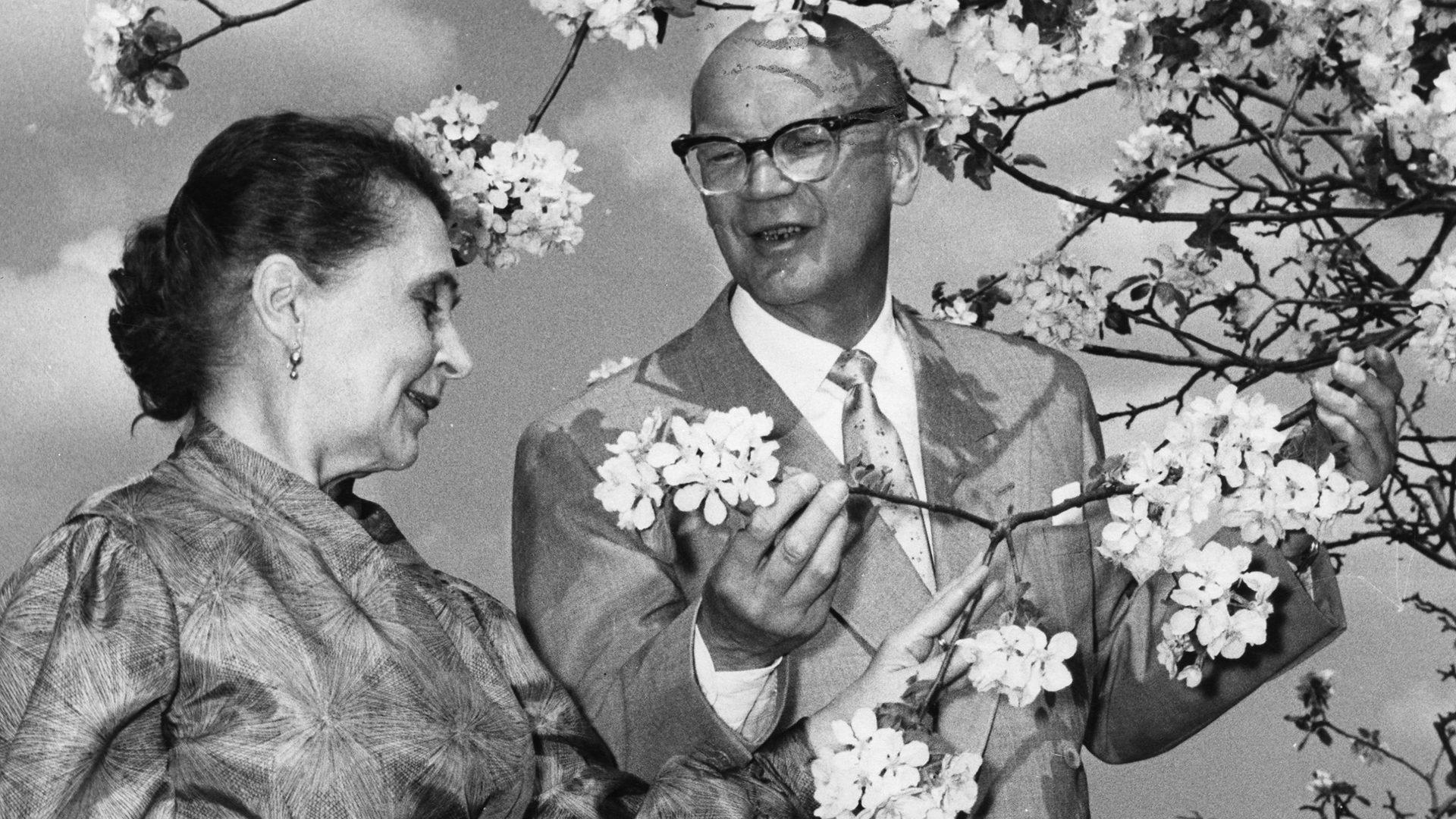 Presidenttipari Urho ja Sylvi Kekkonen puutarhassa.
