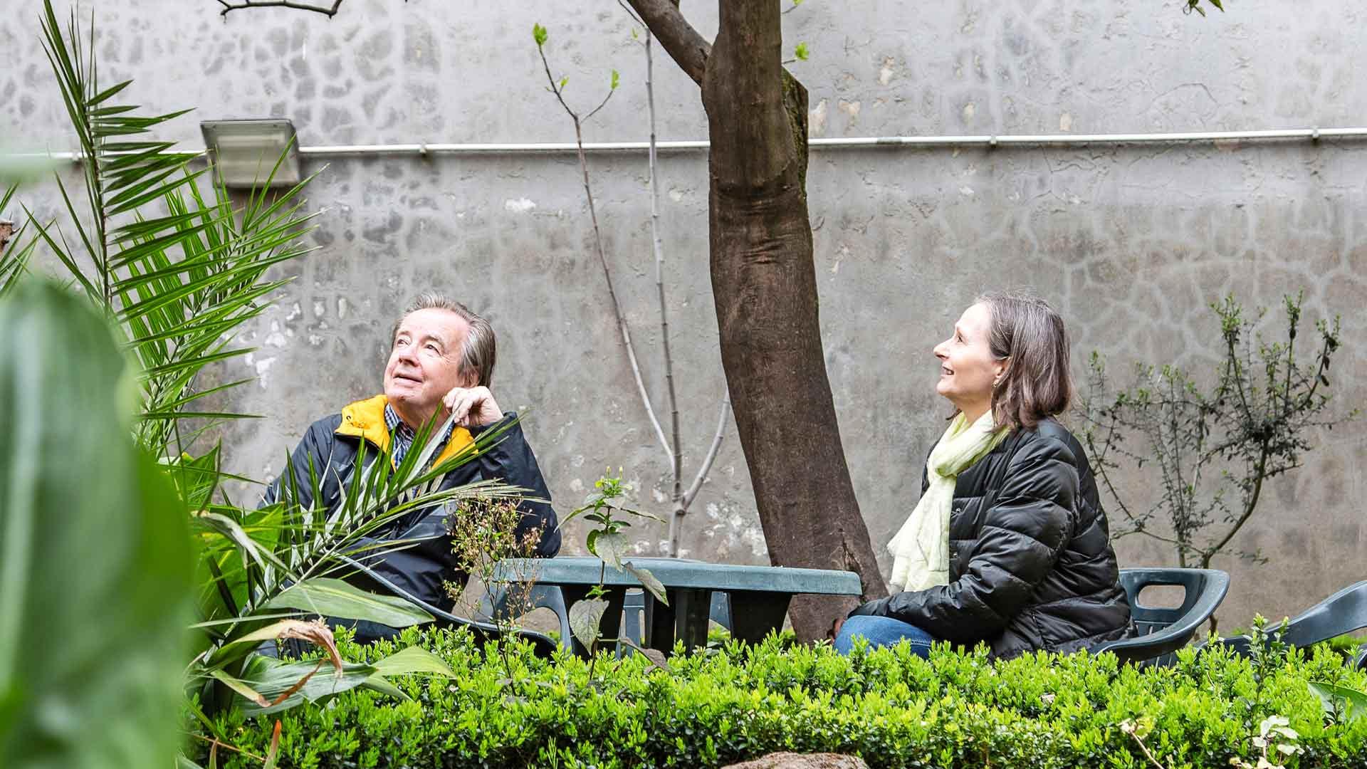 Hostellin puutarha