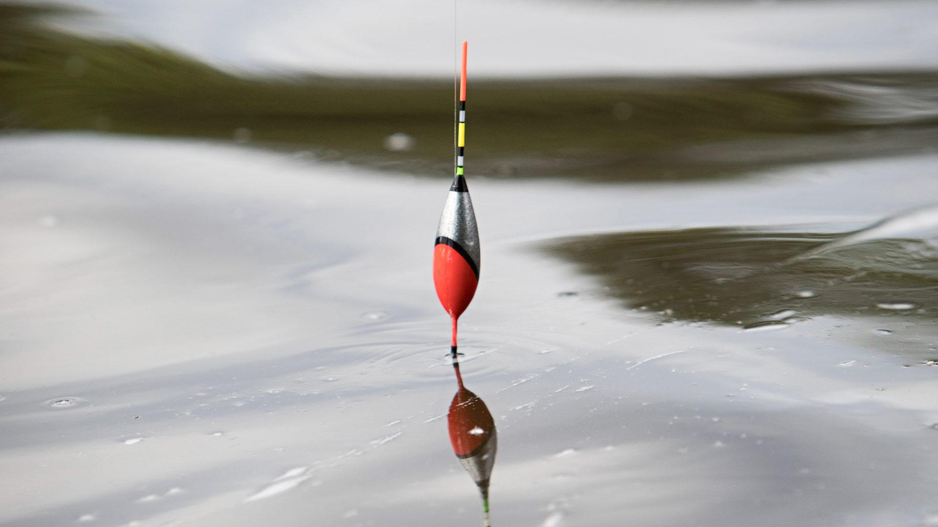 Kalastusta kaupungissa