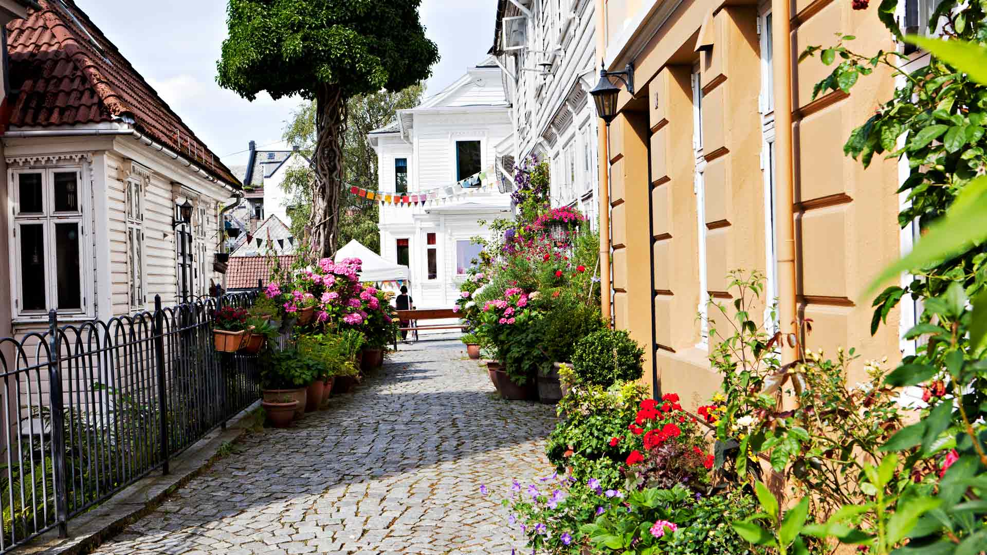 Vanhankaupungin kadut