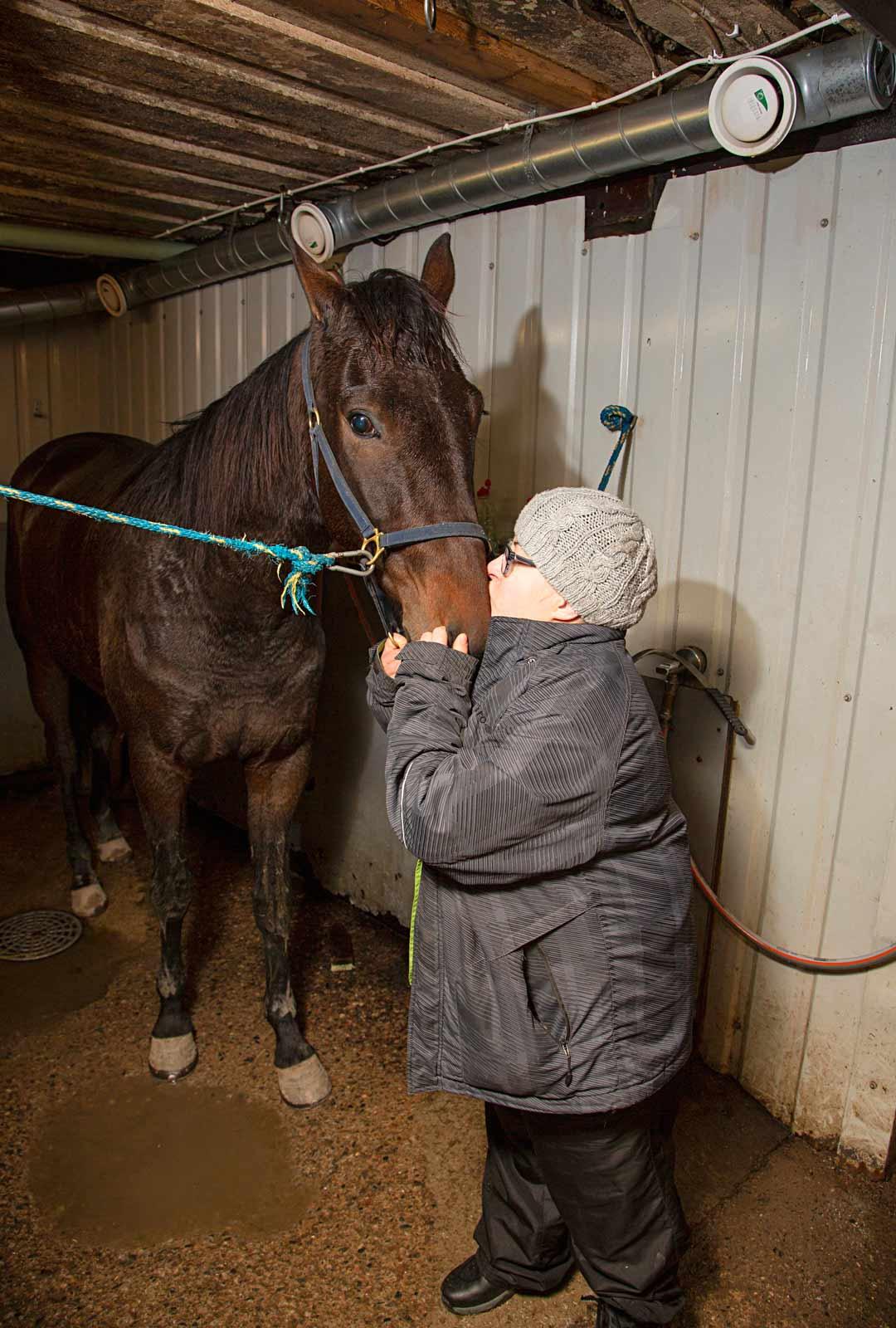 Kiikussa hevoset ovat tottuneet jatkuvaan huomioon ja hellyydenosoituksiin. Miia Heinämö rapsuttaa päivän treenissä ollutta ravuria.