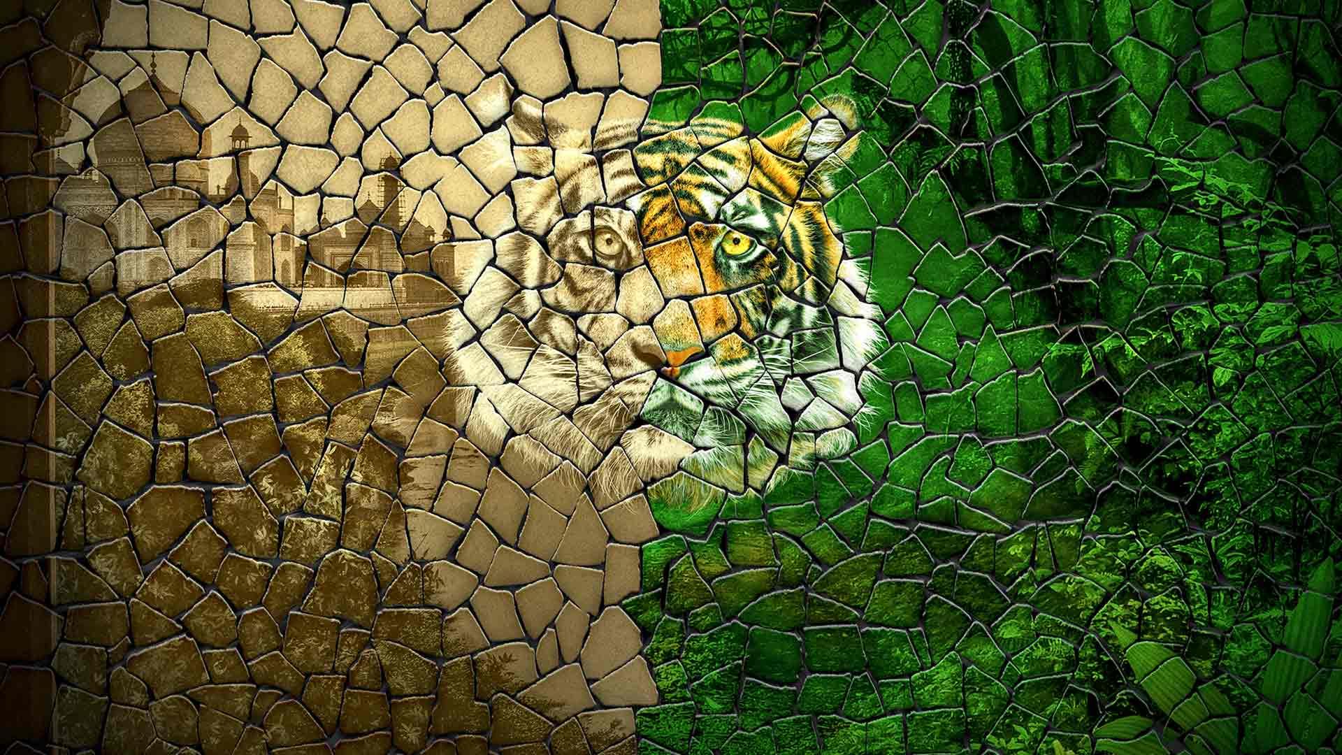 Maailmassa elää enää vajaat 4000 tiikeriä.