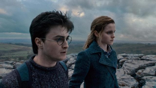 Harry, Ron ja Hermione ovat oman onnensa nojassa ilman Dumbledoren tukea. Pimeät voimat heidän keskuudessaan uhkaavat repiä kolmikon hajalle.