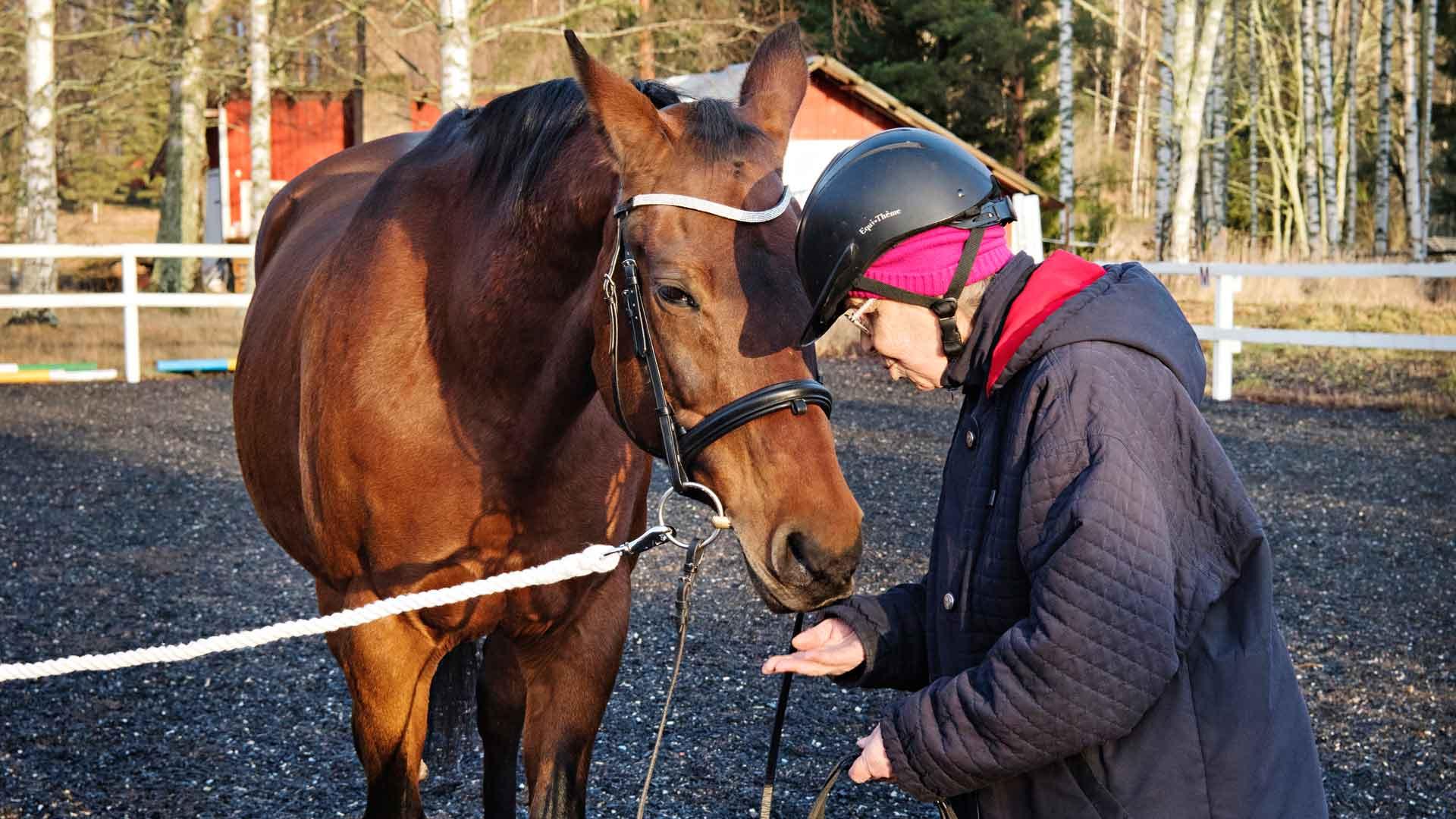 Irmeli ojentaa porkkananpaloja kohteliaasti huulillaan hampsivalle Mausielle palan toisensa perään.
