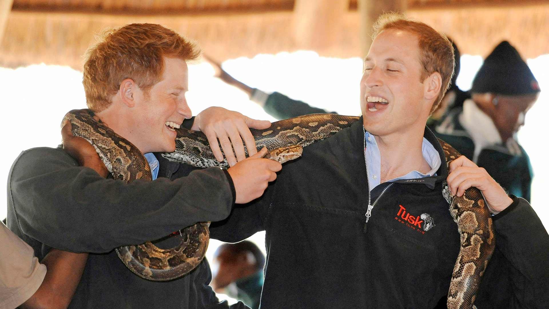 Harry ja Wiliam vierailivat kesäkuussa 2010 Botswanassa. Jos heidän välillään oli tuolloin ongelmia, ne peittyivät iloiseen nauruun.