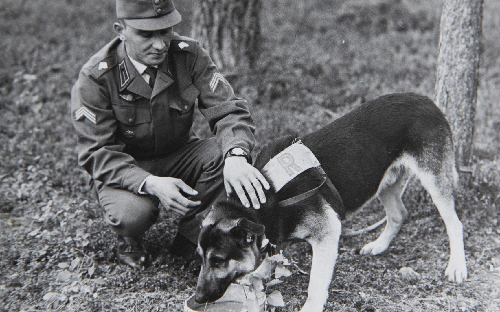 Antti Leivo oli ylpeä Pojusta, jonka hän oli kouluttanut pennusta saakka. Se oli hänen taitavin koiransa koskaan. Leivo tapasikin sanoa, että Pojulta puuttui vain puhekyky.